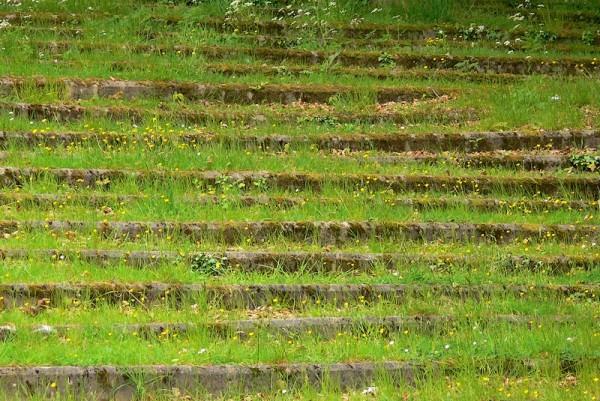 Escalier Vert / Green Stairs