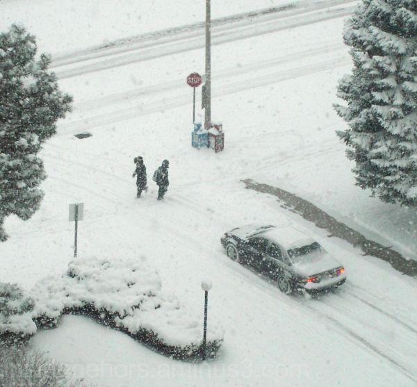 la neige n'arrêt pas