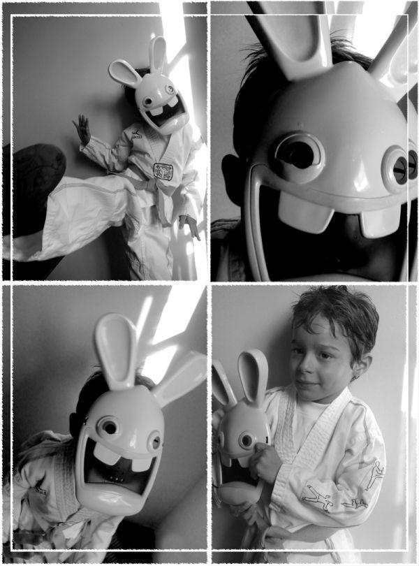 Taekwondo Rabbit !