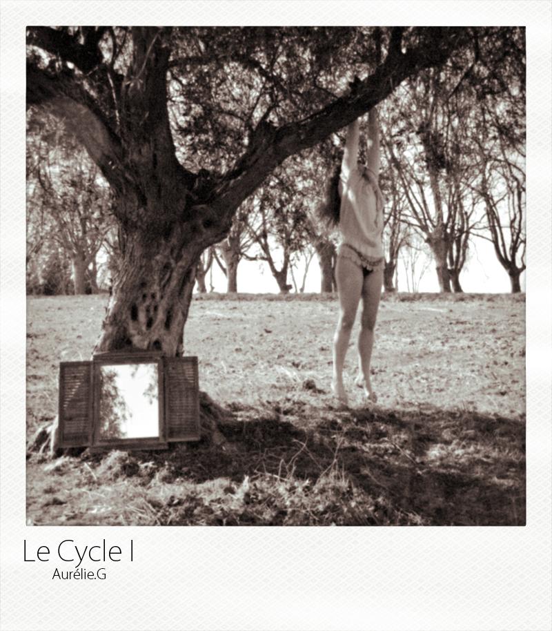 Le Cycle I