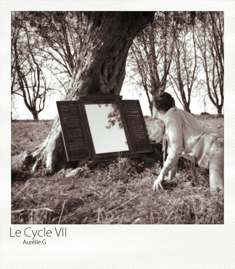 Le Cycle VII