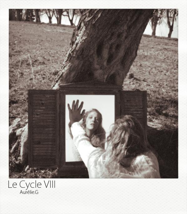 Le Cycle VIII