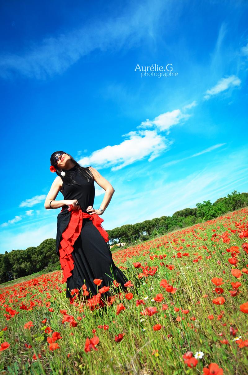 Flamenco et coquelicots