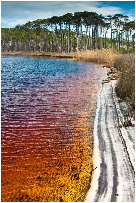 warren lake grayton beach state park florida