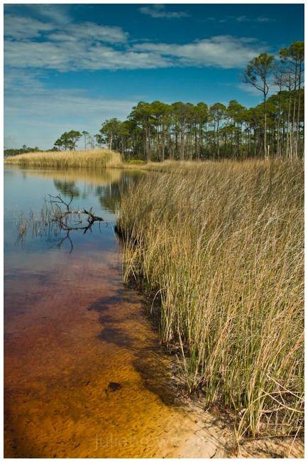 warren lake grayton beach state park florida