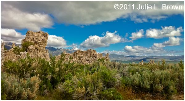 sagebrush and tufa towers at mono lake