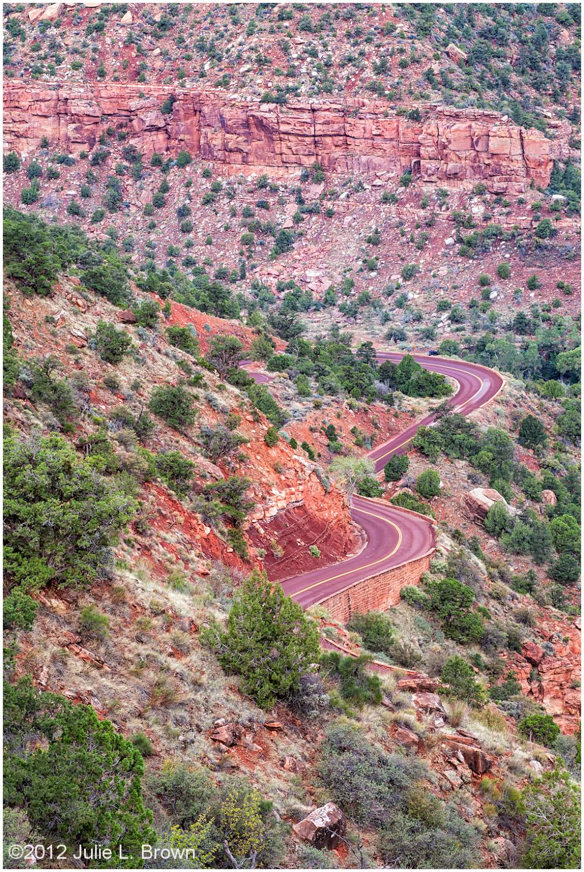 park road before sunris zion national park utah