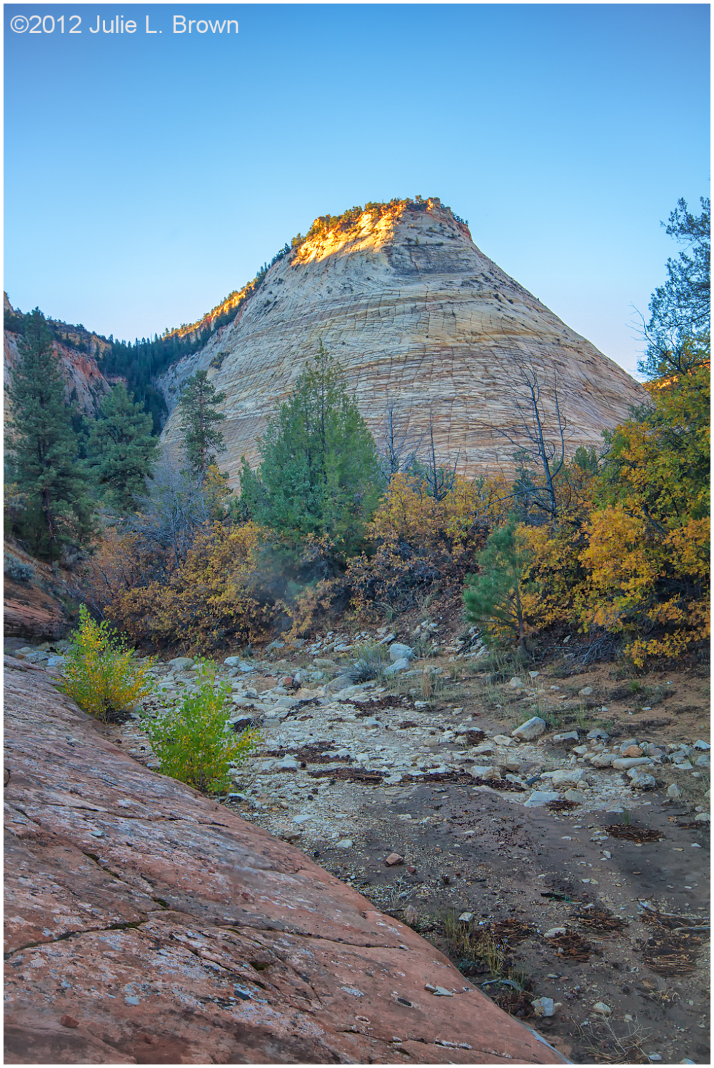 checkerboard mesa at sunrise zion national park