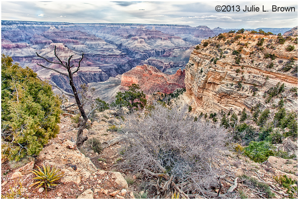 grand canyon south rim before sunset HDR