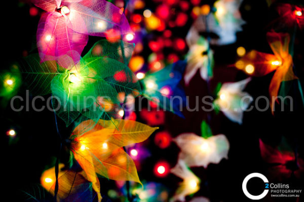 Lights on display at Floriade