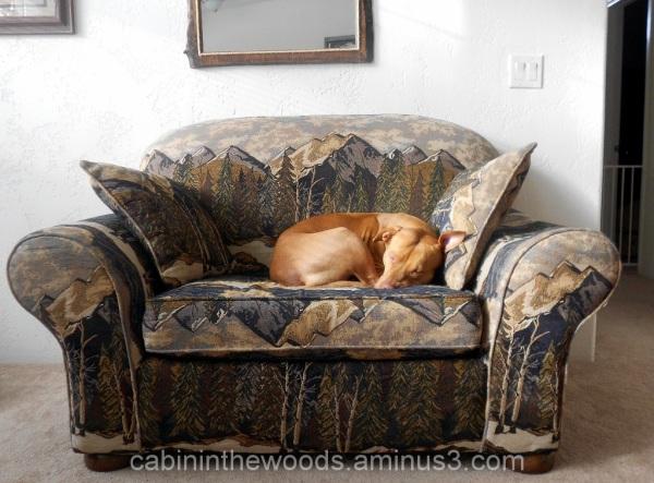 Big Comfy Chair