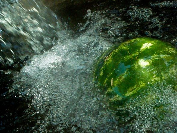 A swimming watermelon!