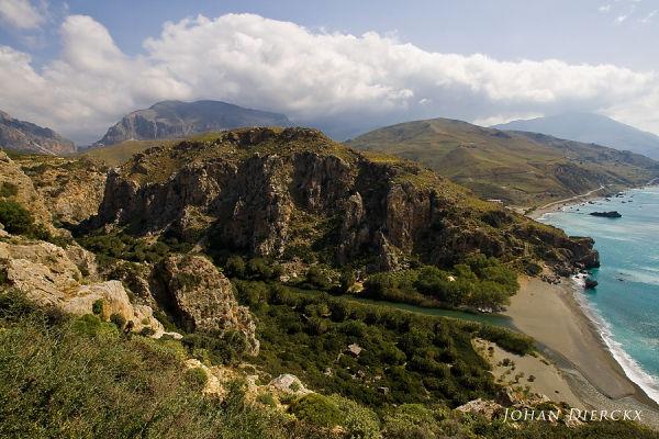 Crete 2010 #15  Preveli palm forest