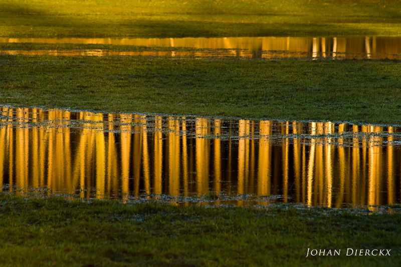 Reflection #4
