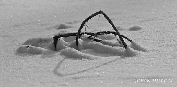 Snowscape #2