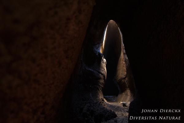 Mount Etna - Grotta di Serracozzo