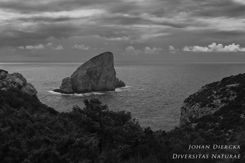 Capo Caccia - Isola di Foradada