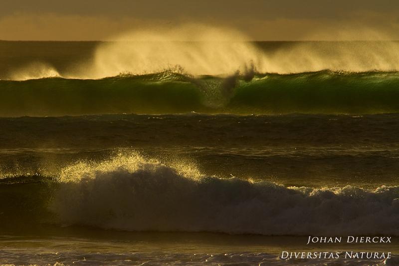 Porto Ferro - waves #3