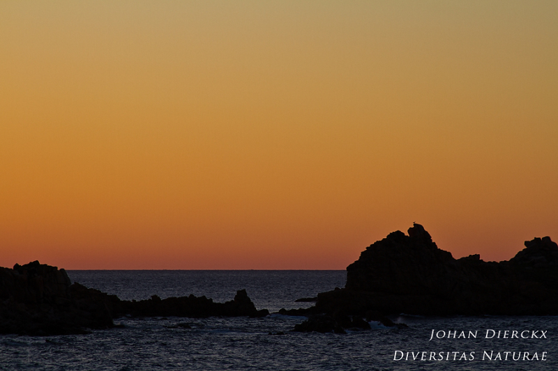 Santa Teresa Gallura - after sunset #2