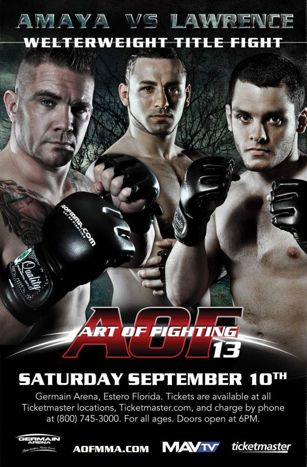 MMA (Mixed Martial Arts) fighting Poster
