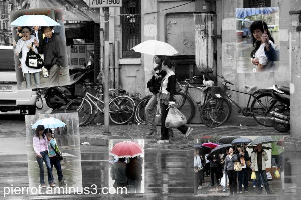 Un petit coin de parapluie .....