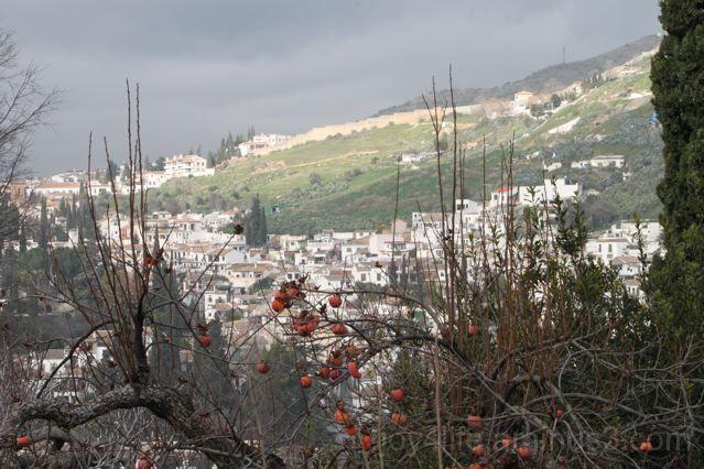 Granada Hillside