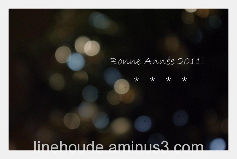 bonne année 2011 *