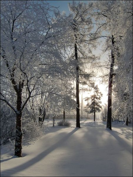 Winterlich(t)