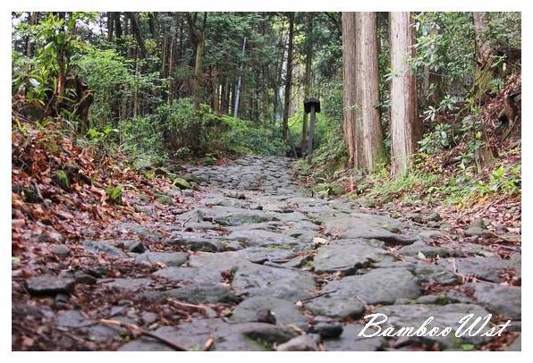 old cobblestone road in Hakone Japan