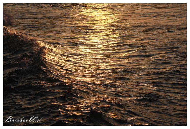 Sea sparkling