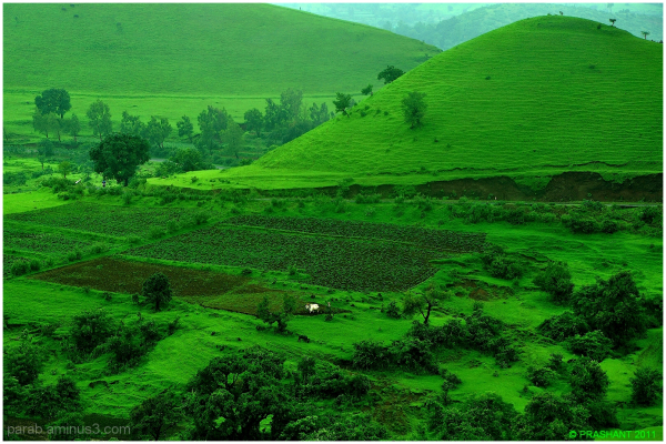 Green View..