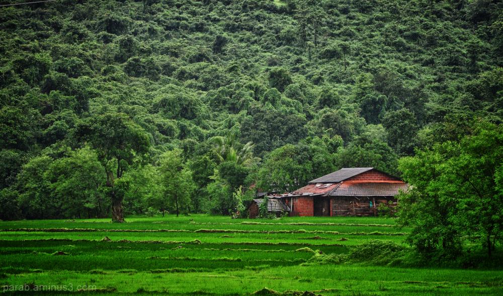 Rural House...7