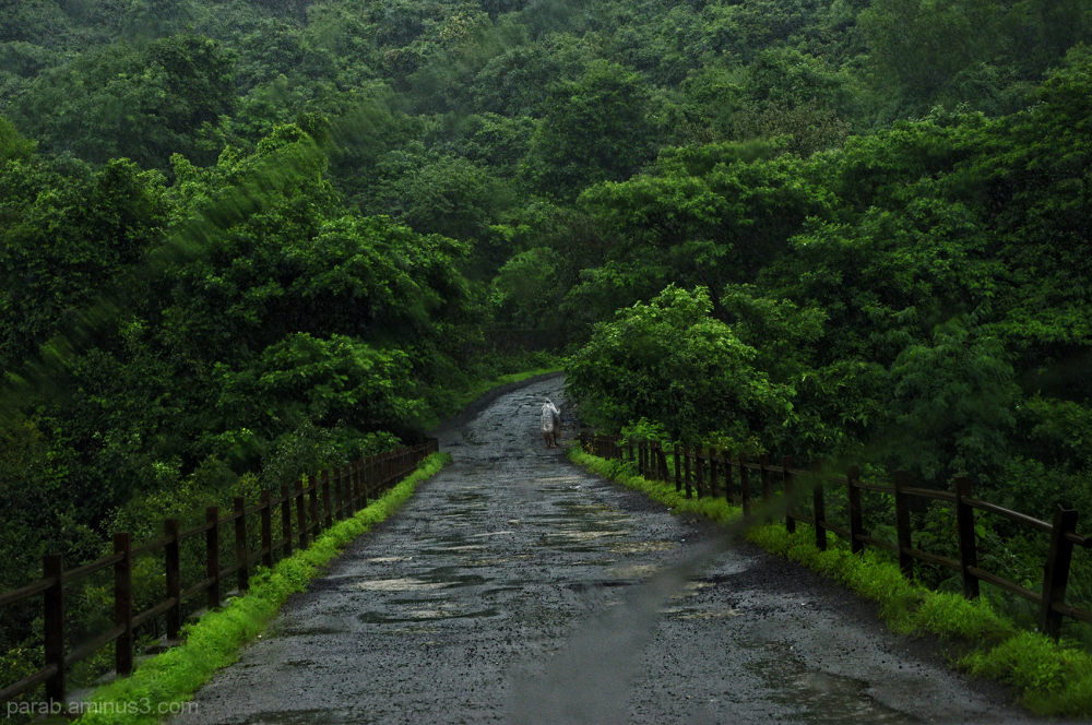 Monsoon journey....1