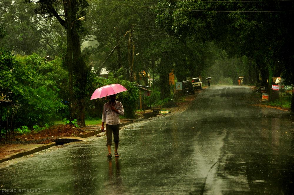 Rainy Morning...