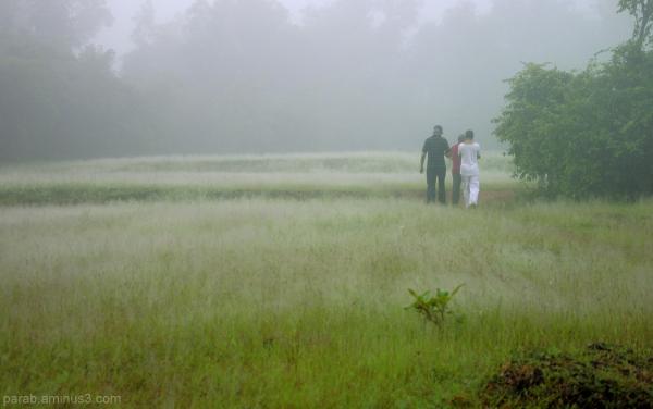 Misty morning..