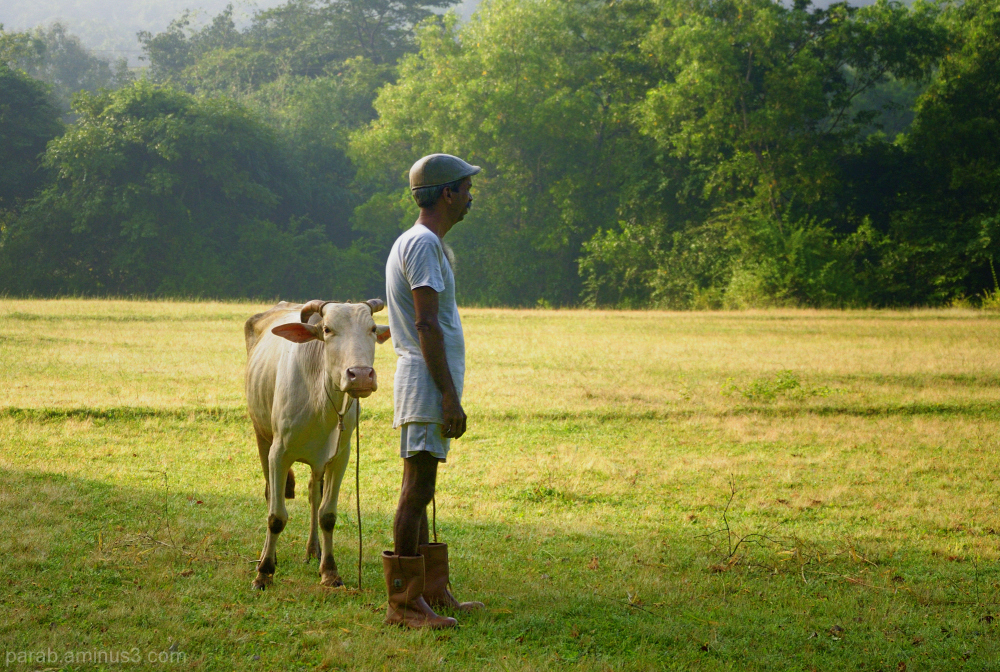 Farm & Farmer..