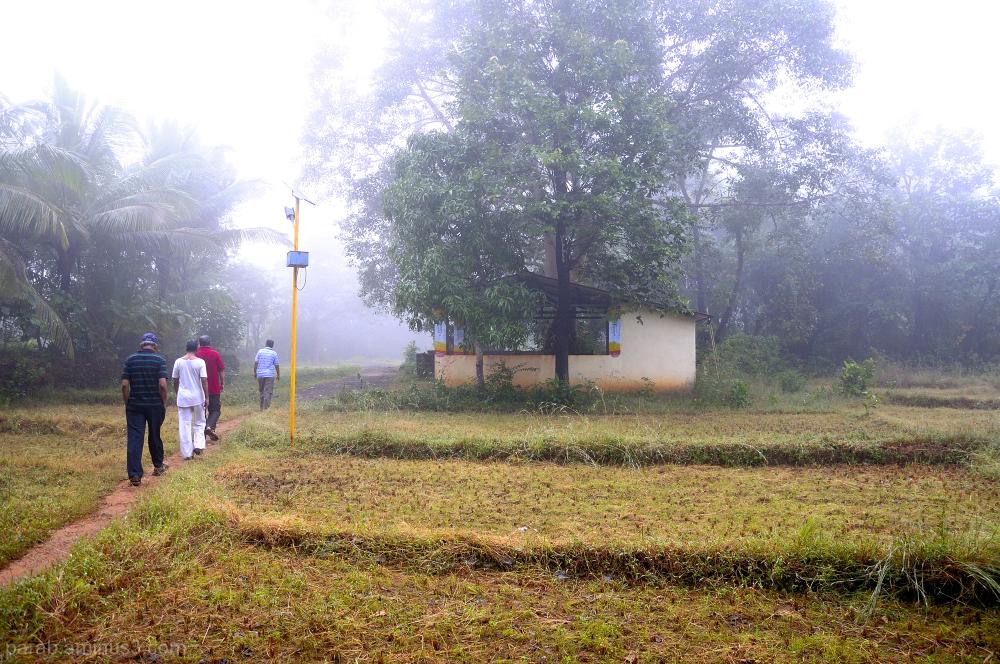 walk through Mist.