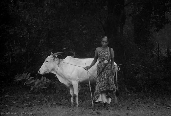 Farmer's Wife.