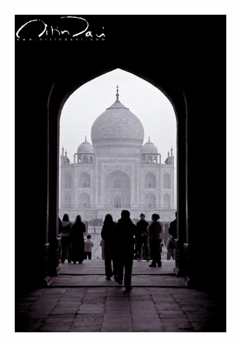 Taj: First Impressions 01