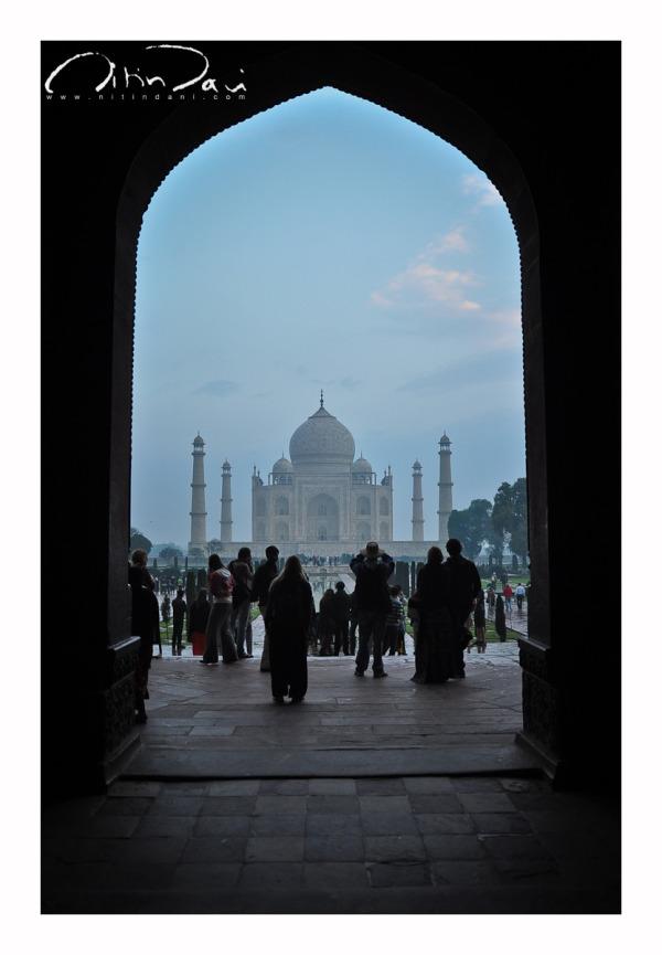 Taj: First Impressions 02