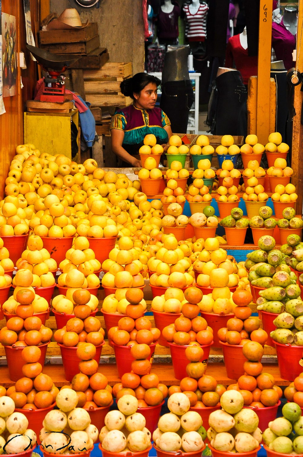 Orange and Yellow in Chiapas