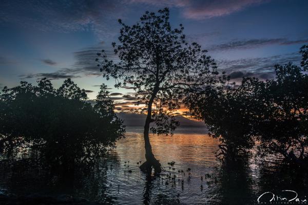 dos palmas, palawan island, philippines, sunset