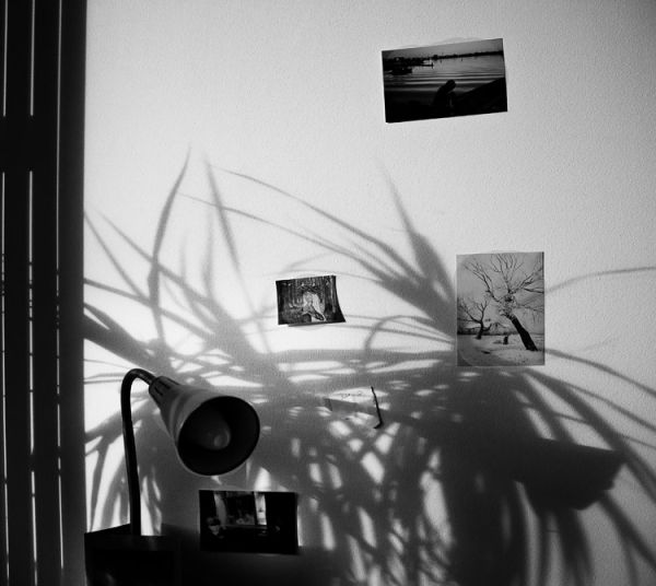 shadows I