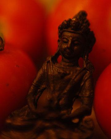Tomatos and Buddha