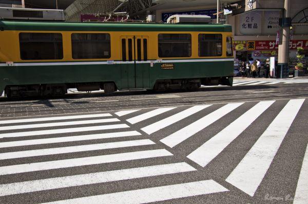 a zebra crossing a tramway