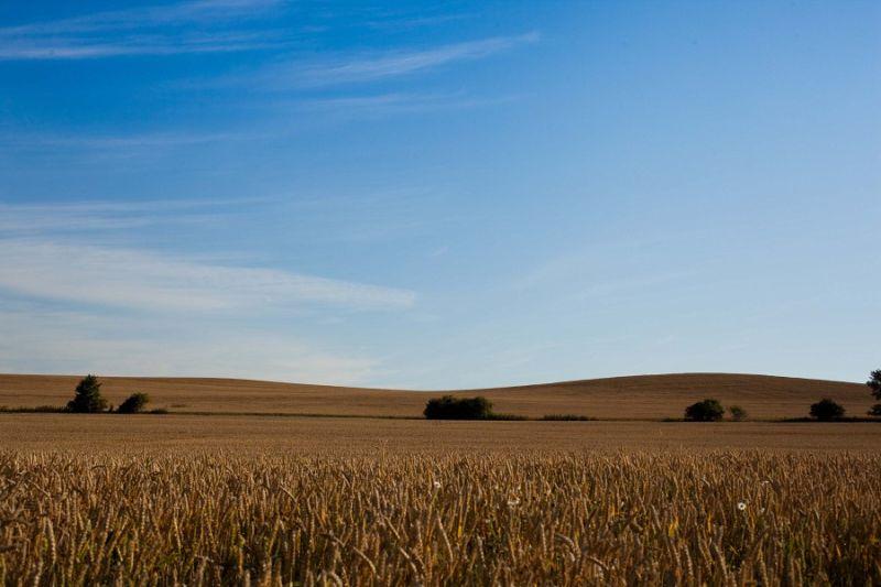 Landscape in Germany (2) ...