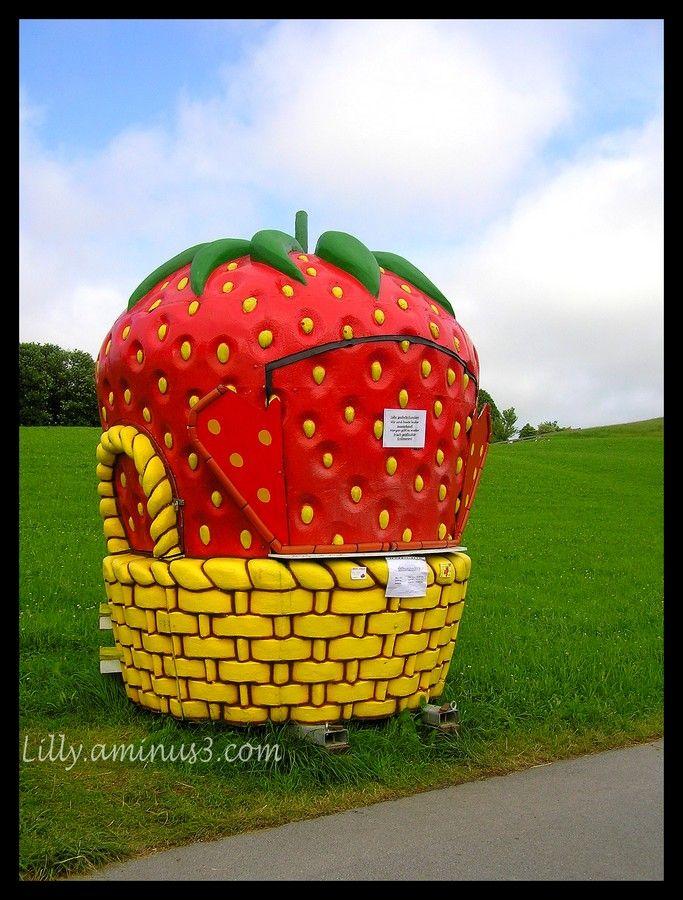 Vente de fraises