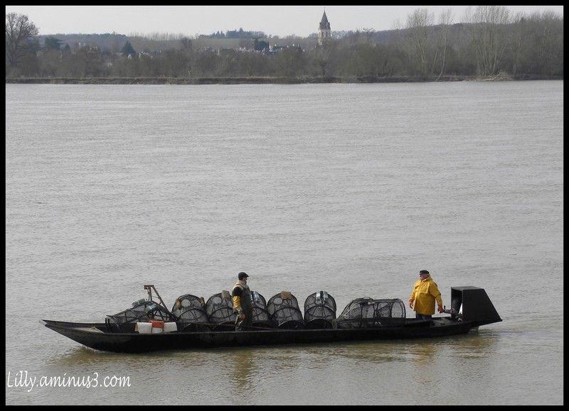 pêche bateau Loire