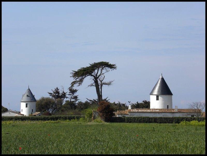 Les moulins de la Boire.
