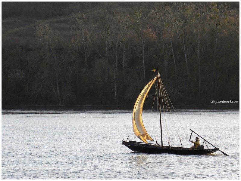 Voguer sur la Loire...